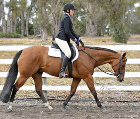 Annalise Kettle riding Cowboy Code in the Junior Horse Hunter Under Saddle