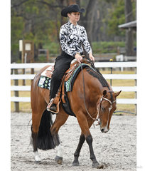 Cowboy Code ridden by Annalise Kettle in the Amatuer Horsemanship