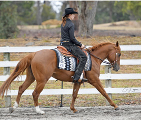 Pekara Deputy Dan and Alex Cruse, in the All Age Ranch Riding feature.