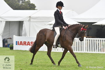 The always busy, Ebonie Lee rode Cassandra Fasan-Jones', 'Kyandra Picturesque' to take third place in the class for Child's Medium Show Pony on day one of the 51st Victorian Barastoc Horse of the Year Show.