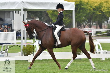 Mia Heinrich rode 'Wynara Illusion' to take sixth place in the Peter Gahan Trophy on day one of the 2020 Victorian Barastoc Horse of the Year Show.