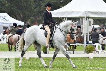 Harrison Postill rode, 'Batavia' to take second place in the Peter Gahan Trophy.