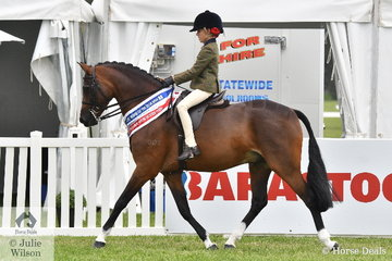 Taylor Shute rode Rebecca Shute's well performed, 'Cimeron Poprock' to claim the Child's Large Show Hunter Pony Championship.