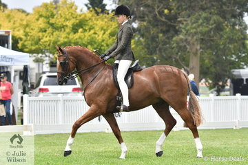 Ava Halloran rode Patricia Ryan's, 'Warrawee Vouleez Vous' to claim the Child's Small Show Hunter Hack Championship.