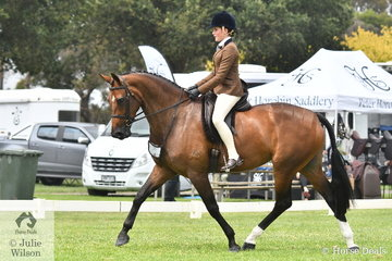 Ella O'Doherty is pictured aboard , Brooke Wheeler's impressive, 'Bloomfield Valtini' during the class for Child's Small Show Hunter Hack.
