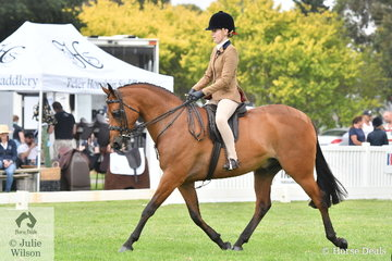 Emily Murray rode her well performed, 'Reigal Manolete' to claim the Child's Small Show Hunter Galloway Championship. Both Champion and Reserve in the Child's classes qualify for the National Show Horse Championships in December.
