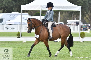 Holly Backman rode her mother, Jenna Backman's. 'DP Popeye' to make Top Ten in the Child's Small Show Hunter Pony Championship.