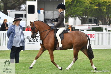 Jessica Sharpe rode her outstanding, 'Imperial Vagabond' to claim the Child's Medium Show Hunter Pony Championship.