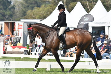 Briony Randle took out the Newcomer Large Hack Reserve Championship with Sarah Allsopp's, 'Montero'.