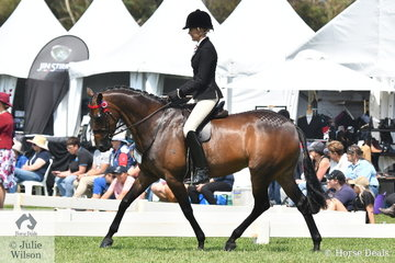 Ali Berwick rode her, 'Kensington Florentine Gem' to take third place in the Newcomer Large Galloway Championship.