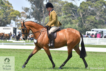 Daniel McNamara rode his, 'Hibrie Night Out' to take out the Newcomer Show Hunter Galloway Reserve Championship.