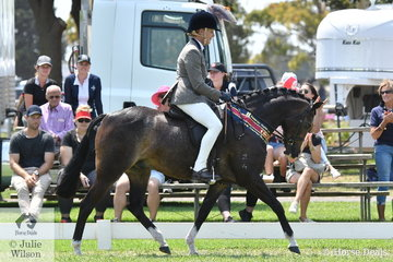 Well known horsewoman, Sara Love rode her, 'Marann Amarillo' to claim the 2020 Barastoc Newcomer Show Hunter Pony Championship.