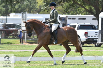 Patricia Ryan's impressive, 'Warrawee Vouleez Vous' was declared Child's Champion yesterday and this afternoon  with Elizabeth Krog in the saddle took out the Barastoc 2020 Newcomer Show Hunter Horse Championship.