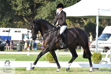 Syenna Vasilopoulos rode her super, 'Hollands Bend Royal Consort' to claim a unanimous decision and the Large Show Hunter Hack Championship.