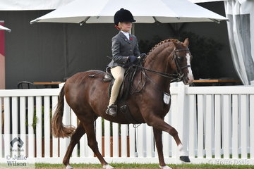 Evangeline Parsons rode Michelle Labahn's very well performed, 'Owendale Mr Perkins' to be declared Champion Rider Under 9 Years.