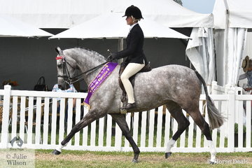 Daizi Plumb has had a super weekend with Robyn Parker's, 'DP London' and today took out the 2020 Barastoc Large Galloway Reserve Championship.