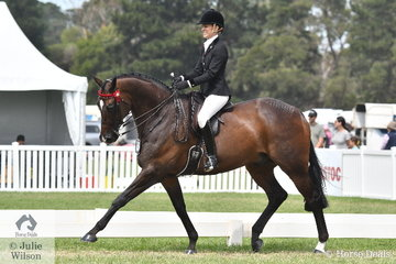 Natalie McKay rode her 'St Andrews' to take second place in the class for Ridden Australian Stud Book exhibit, sponsored by Racing Victoria.
