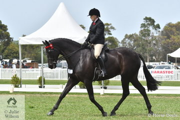 Well Known and popular exhibitor, Christine Frost rode her beautiful Thoroughbred gelding, 'Ink' to take fourth place in the 2020 Barastoc Large Hack Championship.