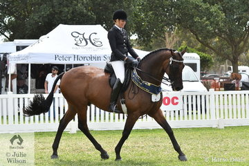 Catherine Neil rode her well performed hack, 'SLM Mercedes' that raced as Crosswinds to win the class for ASB Thoroughbred sponsored by Racing Victoria.