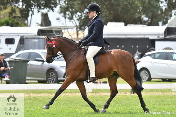 Successful Barastoc competitor and pony breeder, Marcia Beard rode her, 'Rhyl Monarque' to third place in the strong Medium Pony Championship.