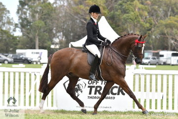 Ali Berwick rode her own, 'Royal Oak Foreign Affairs' to claim the Barastoc 2020 Small Hack Reserve Championship.