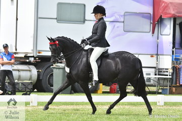 Lynda Hayes rode Vicki Pisciotta's very well performed, 'Wideacre Black Diamond' to claim the Barastoc 2020 Large Pony Championship.