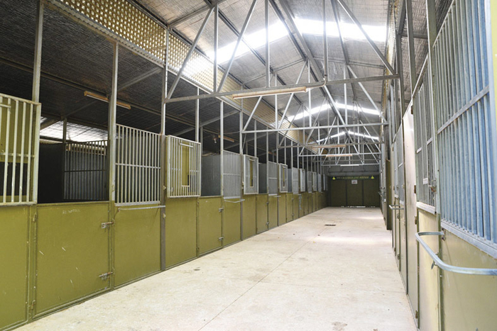 There are 37 boxes at Leisurely, most situated in this main barn.
