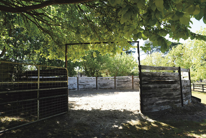 An old, but still useful round yard with plenty of shade.