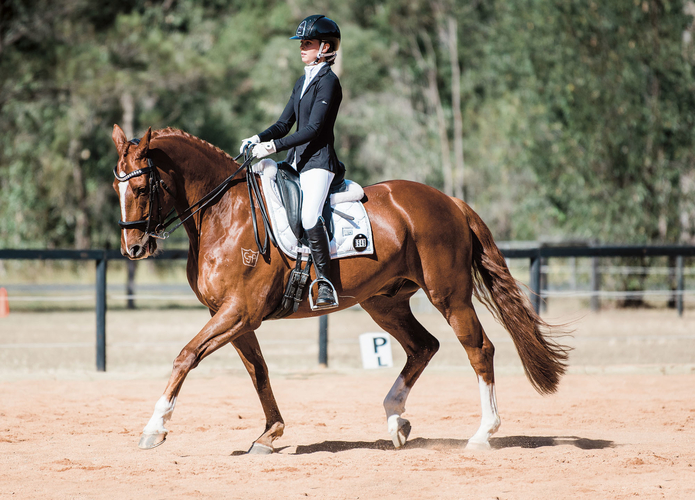 Lucy pictured on her horse CJP His Lordship.<br> Photo: Flash Pony