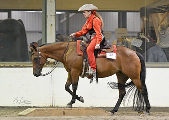 Cheryl Carter -PIntoy and PJ Charary Blazing Glory in the All Age ranch Riding.