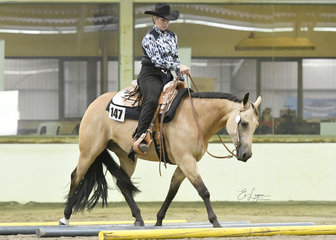 Icee A Dream and Carolyn Johnston in the Novice Amateur Trail.