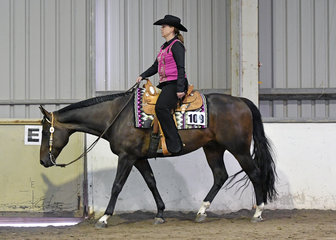 QXH Rockstar and Kelly Timms in the Amateur Western Horsemanship.