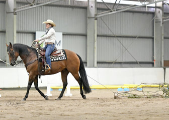 RQH Whiskey Girl ridden by Jackie Loftus in the Ranch Versatility Amateur Trail