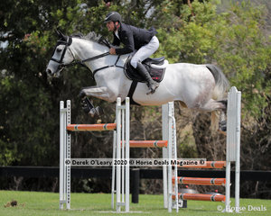 """Billy Raymont had multiple rides in every class, pictured here on """"Allwynds Valherro"""" in the 140cm placing 6th"""
