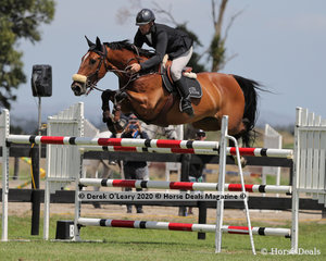 """Jim Richards rode """"Foreign Secret in the 140cm class"""