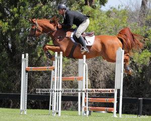"Russel Morrison rode ""C.E Cajun"" in the 140cm class placing 2nd"