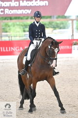 Shania Madden rode Katrina Smith's, 'BC Romanov' to take fourth place in the  Young Rider Team Test CDIY at the 2020 Willinga Park Dressage By The Sea.