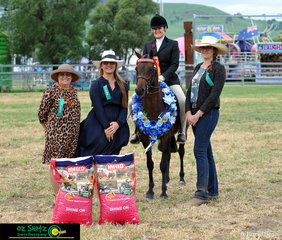 Supreme Hack of the Killarney Show was Mandelay Lord Litchfield ridden by Jane Anderson.
