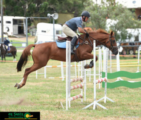 Jumping well over the 80cm fences was Lola ridden by John Broadbent at the 2020 Killarney Show.