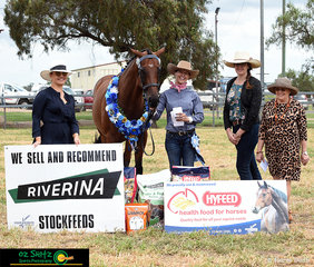 """Supreme Led Exhibit of Killarney show went to the Thoroughbred Champion 'Honey Toast"""" with handler, Emily Daniel. The Supreme Led was judged by (L-R) Ms Brooke Higgins, Mrs Nicole Currie and Mrs Lyn Roberton."""