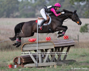 """Madeleine O'Callaghan placed 5th in the CCN 2 * riding """"Equineaffair Mystique"""" with a final score of 44.50"""