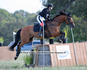 """Alexandra McDonough placed 2nd in the CCN 2.5* riding """"Joie Du Lys"""" with a final score of 40.90 picking up 1.6 time faults on Cross Country, but clear on Showjumping"""