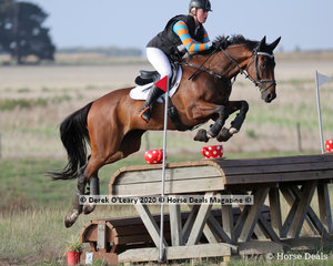 """Madisson Geilen placed 5th in the CCN 2.5* riding """"GPH Valet De Carreau"""" with a final score of 51.20"""