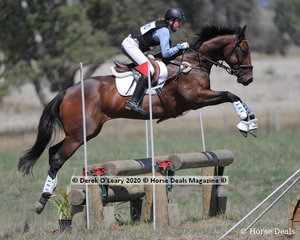 """Jorja Kirsopp-Cole won the EVA95 Section B riding """"Hero In Disguise"""" with a winning score of 33.70"""