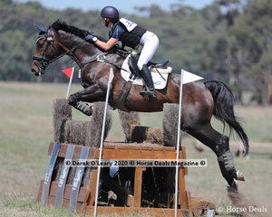 """Annabelle Nelson rode """"WS Poncho Loco"""" in the CCN 1*"""
