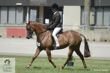 Sandra Henry rode her own and Alan Henry's, 'Divine Romance' to win the class for Riding Pony Hunter Mare/Gelding 12.2-13.2hh on the new day one (of six) at the 2020 ActewAGL Royal Canberra Show.