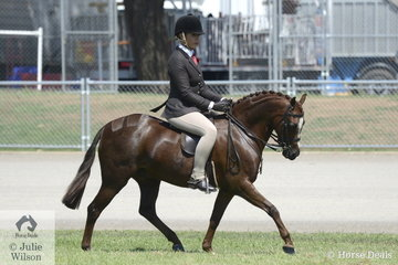 Tanya Benton-Hall rode the Benton and Benton-Hall Families', 'Owendale Valencia' to win the class for Riding Pony Hunter N/E 12.2hh.