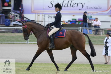 Paige Richards rode Eileen Clarke's, 'Thamesbury Contendress' to win the class for Ridden ANSA Mare/Gelding 15-16hh.