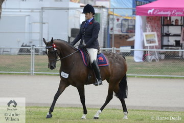 Amy Geleedst rode her own and the Austin and Lilley nomination, 'Crack A Lackin' to take second place in the class for ANSA Mare/Gelding 15-16hh.