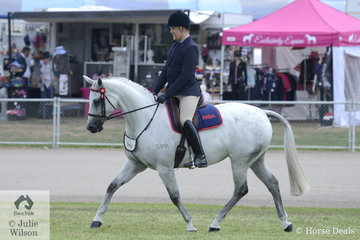 Dylan Greig riding his Lilivale Duet made the workout phase of the large class for Ridden ANSA Mare/Gelding 15-16hh.